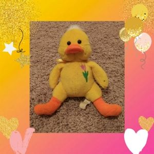 Quackers The Duck